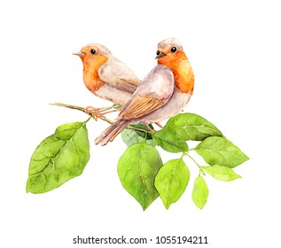 Two birds on branch with green leaves. Watercolor for summer design