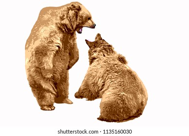 Two brown bears fighting each other