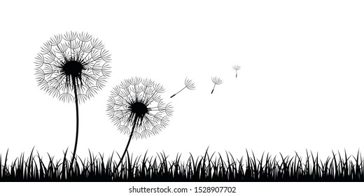 two dandelion silhouette with flying seeds on meadow illustration