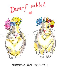 Two dwarf rabbits wearing clolourful flowers on their heads.
