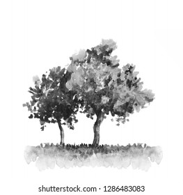 Two garden trees black and white ink drawing. Watercolor rural illustration. Hand painted