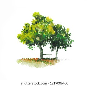 Two green garden trees with bench. Watercolor rural illustration. Hand painted.