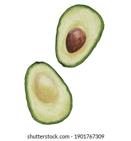 Two halves of a ripe avocado on a white background. Watercolor hand drawn illustration of an avocado cut in half with a bone. Isolated fruit for print, textiles, menus and postcards.