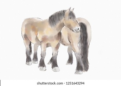two horses drawn