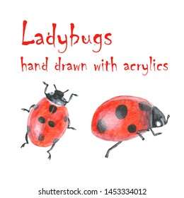 Two pretty ladybugs, isolated, hand drawn with acrylics