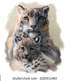 Two snow leopards watercolor illustration
