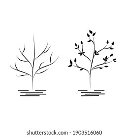 Two trees with foliage and without foliage, nature illustration, design. Outline drawing. Simple cartoon flat style, linear sketch. Black contour.