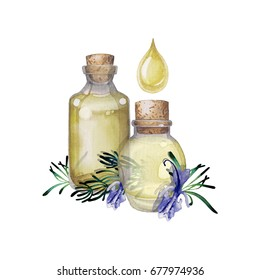Two watercolor bottles of essential oil decorated with rosemary twigs and flowers. Hand painted natural design isolated on white background