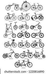 Types of bicycles. Hand drawn illustration of different bikes in vintage engraved style. Isolated on white background