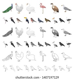 Types of birds cartoon icons in set collection for design. Home and wild bird bitmap symbol stock web illustration.