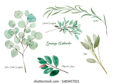 Types of greenery watercolor set