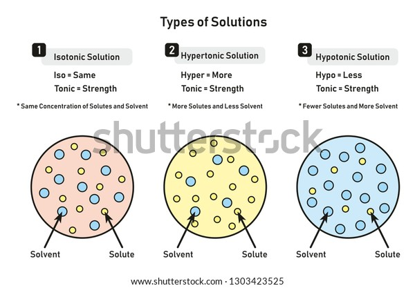 types of solutions infographic diagram including isotonic hypertonic  hypotonic and relation between solute and solvent for