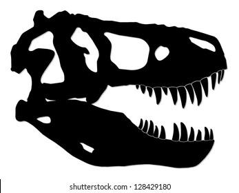 tyrannosaur skull/ dinosaur/ silhouette illustration