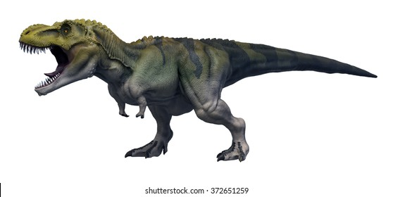 Tyrannosaurus Rex 3D render on isolated white background.