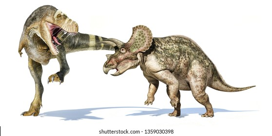 Tyrannosaurus rex dinosaur attacking a triceratops. Isolated on white background with dropped shadow. 3d rendering.