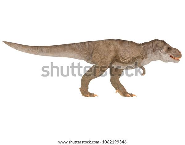 Tyrannosaurus Rex Trex Different Point View Stock Illustration 1062199346