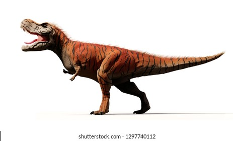 Tyrannosaurus rex, T-rex dinosaur from the Jurassic period (3d render isolated with shadow on white background)