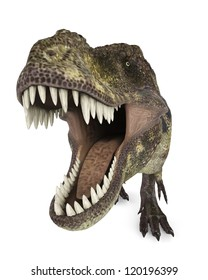 tyrannosaurus rex up view