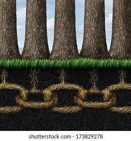 Unbreakable solidarity and teamwork cooperation concept as a group of trees connected underground with strong roots shaped as chain links as a business friendship metaphor and partnership success.