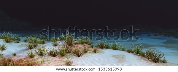 Underwater landscape with corals Computer generated 3D illustration