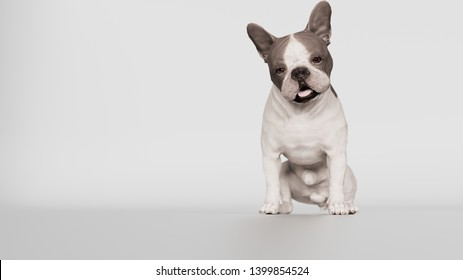 Unhappy French bulldog looking down while sitting 3d rendering