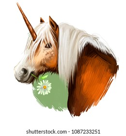Unicorn digital art illustration isolated on white background. Legendary ancient mythological crature, fairy-tale dreamlike animal character drawing. Hand drawn graphic clip art for web, print, design