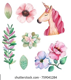 Unicorn and Flowers on white background