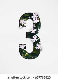 Unique Number eight ; 8 letter alphabet made of real blooming flowers & leaves with paper cut. Illustration of floral alphabet collection for design project, poster, birthday card, ads, logo, concept.