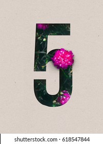 Unique Number five ; 5 letter alphabet made of real blooming flowers & leaves with paper cut. Illustration of floral alphabet collection for design project, poster, card, brochure ads / advertising