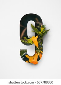 Unique Number nine ; 9 letter alphabet made of real blooming flowers & leaves with paper cut. Illustration of floral number collection for design project, poster, birthday card, ads, logo, concept.