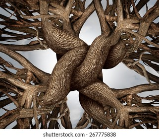 Unity symbol as an eternal knot of trust made from the roots and trunks of growing trees as a community or business friendship concept for the power of teamwork and solidarity.