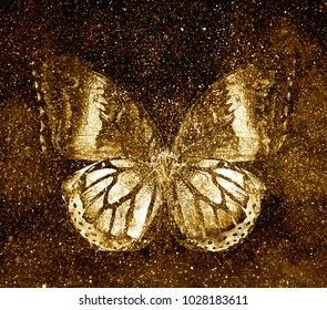 Universe starry sky with butterfly