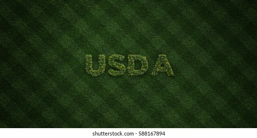 USDA - fresh Grass letters with flowers and dandelions - 3D rendered royalty free stock image. Can be used for online banner ads and direct mailers.