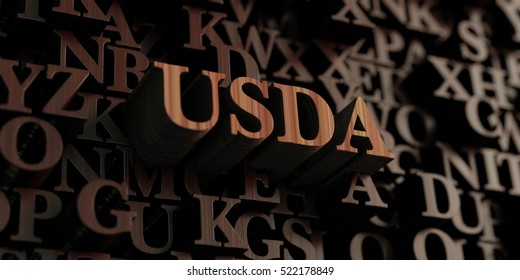 Usda - Wooden 3D rendered letters/message.  Can be used for an online banner ad or a print postcard.