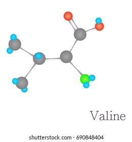 Valine 3D molecule. Cartoon illustration of valine 3D molecule  for web design