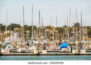 Variety of yachts and commercial fishing boats in large marina near town of Bodega Bay in Sonoma County, California, USA, with digital oil-painting effect, for coastal, marine, and travel motifs