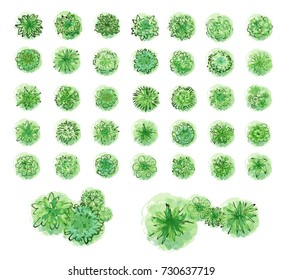 Various green trees, bushes and shrubs, top view for landscape design plan. Illustration, isolated on white background. Raster version.