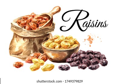 Various raisins card. Hand drawn watercolor illustration isolated on white background