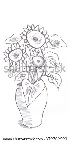 Drawings of sunflowers in pencil dating
