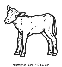 Veal icon. Hand drawn illustration of veal icon for web design