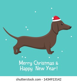 Vector Christmas icon animal dog dachshund. Background dog breed dachshund in a New Year's red hat. Illustration of a pet dachshund puppy in flat style