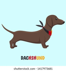Vector Dachshund dog animal icon. Character beige puppy dog ​​dachshund in a scarf color of the German flag. Illustration of a pet puppy dog ​​dachshund in flat minimalism style.