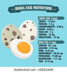 Vector Food product icon nutritional value of quail eggs. Cartoon quail eggs with a description of calorie and nutritional value. Illustration food quail eggs in flat minimalism style.