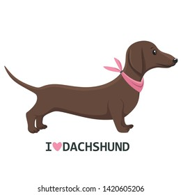 Vector icon animal dog dachshund. Character dachshund in a pink scarf and text: I love dachshunds. Illustration character puppy dog ​​dachshund in flat minimalism style.