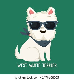 Vector icon of dog breeds West White Terrier. Illustration west white  terrier puppy is sitting. Image west white terrier in sunglass