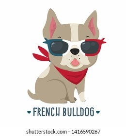 Vector icon pet dog french bulldog. Character beige bulldog in sunglasses. Illustration of a pet puppy dog ​​french bulldog frenchie in flat minimalism style.