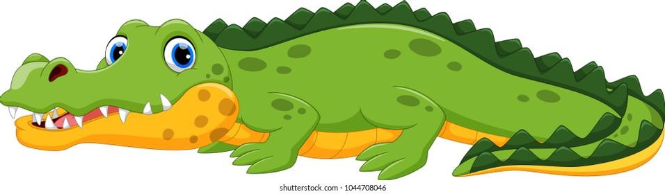 Vector illustration of crocodile cartoon isolated on white background