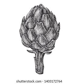 Vegetable artichoke, graphics, pointillism, dot