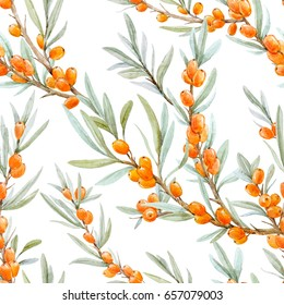 Vegetable watercolor pattern of branches and berries of sea-buckthorn