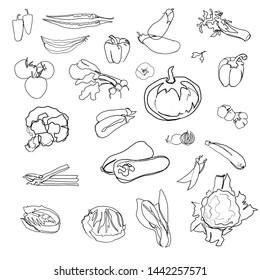 vegetables icon  vegan graphics one line